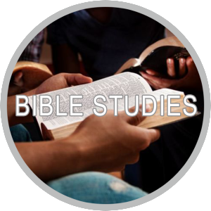 Bible Studies grey